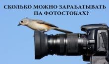 Кто сколько зарабатывает на фотостоках
